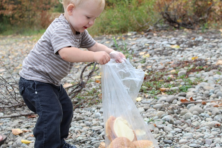 Looking for something fun to do with your toddler?  Click through to get a fantastic idea!