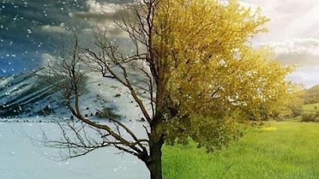 Μερομήνια: Τι δείχνουν για κάθε μήνα – Πώς θα εξελιχθεί ο καιρός έως το καλοκαίρι