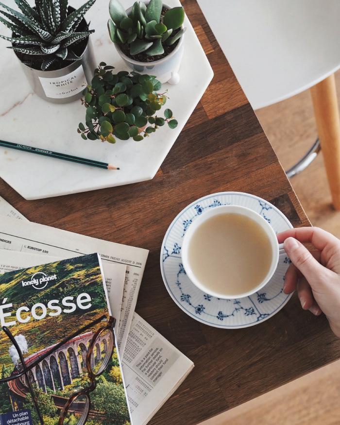 Moment cocooning : un thé, des plantes et un livre