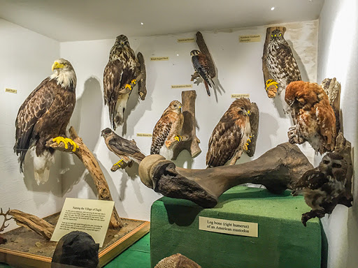 Museum on the Stoney Ridge Segment of the Ice Age Trail