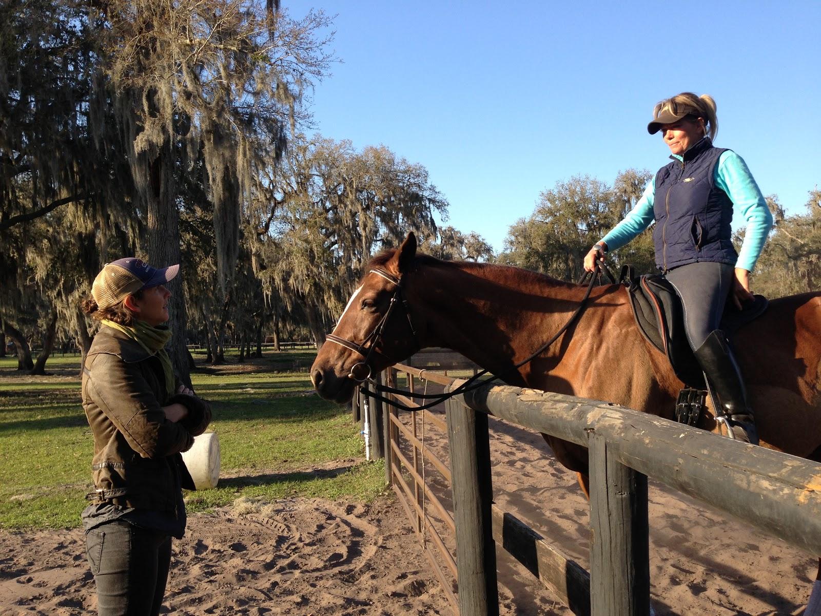Alissa Mayer - Certified Equine Hanna Somatics® Educator