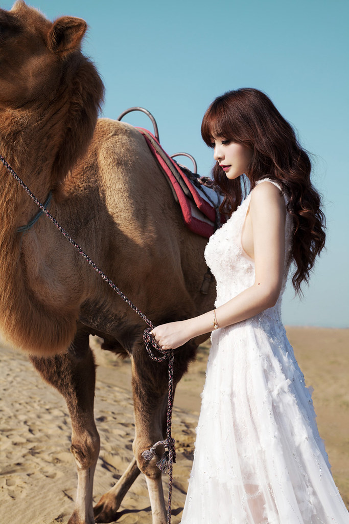 Gallery - Chinese beautiful model Liu Yan with Sexy White Dress on Desert Photo - P1