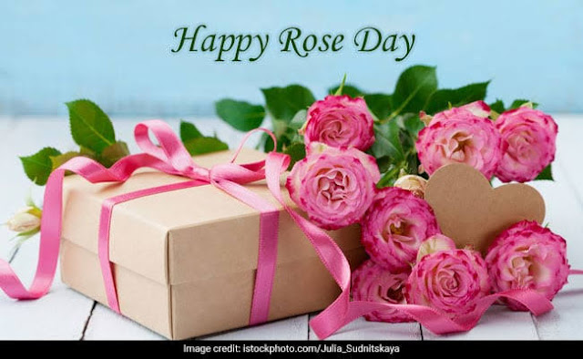 rose day greetings cards wishes images