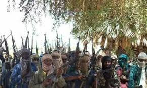 70 Nursing mothers and their children abducted in fresh attacks by bandits in Zamfara