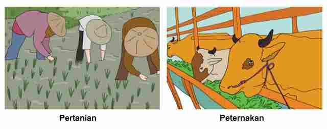 Pertanian dan Peternakan