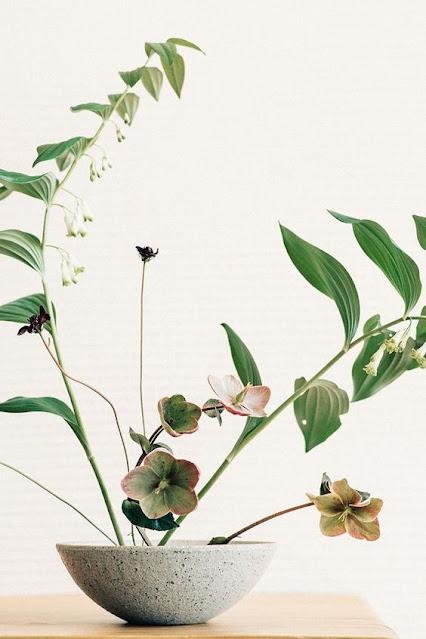 Ikebana Seni Merangkai Bunga Gaya Jepang