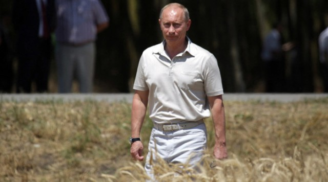 Russian Organic Wheat takes world by Storm