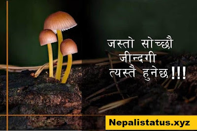 nepali-quotes-about-life-in-english