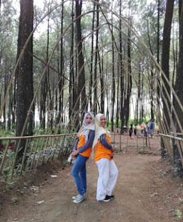 Lorong bambu di Hutan Pinus Precet, Wagir, Malang