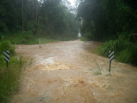 Our access road; the creek had swollen so much, the road itself was a river...