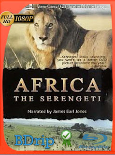 Africa: The Serengeti (1994) BDRIP 1080p Latino [GoogleDrive] SilvestreHD