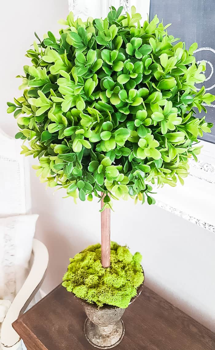 boxwood topiary from top to bottom