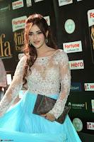 Telugu Actress Angela Krislinzki in transparent top at IIFA Awards 2017 Exclusive 26.JPG