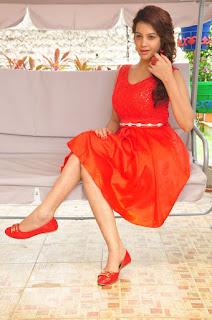 Actress Deeksha Panth Stills in Red Short Dress at Banthi Poola Janaki Press Meet  0111.jpg