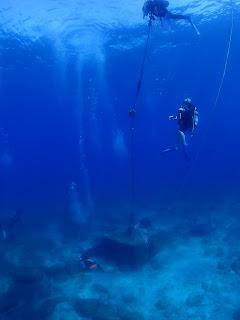 2021年7月29日の柏島ダイビング