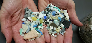 Microplastic Debris