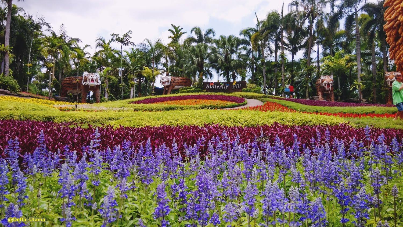 Nong Nooch Tropical Botanical Garden Is A Must Visit In Pattaya I Am The Flashpacker