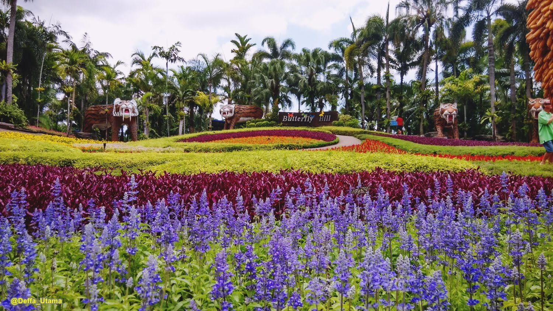 ... Nong Nooch Botanical Garden, are you ? IMG_20150429_120129_HDR