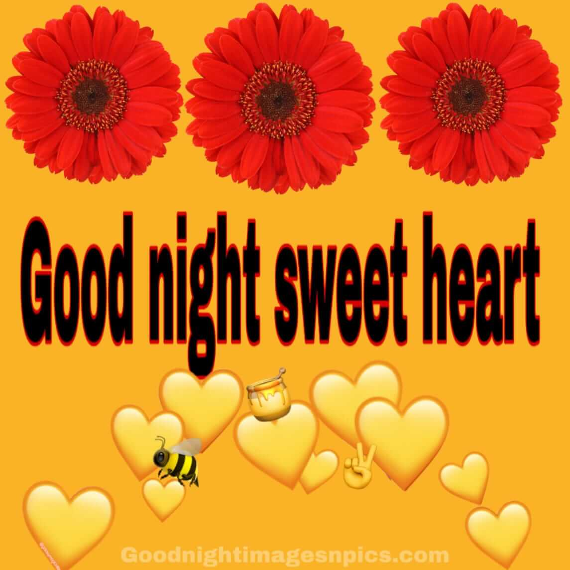 Lovely Images of Good Night
