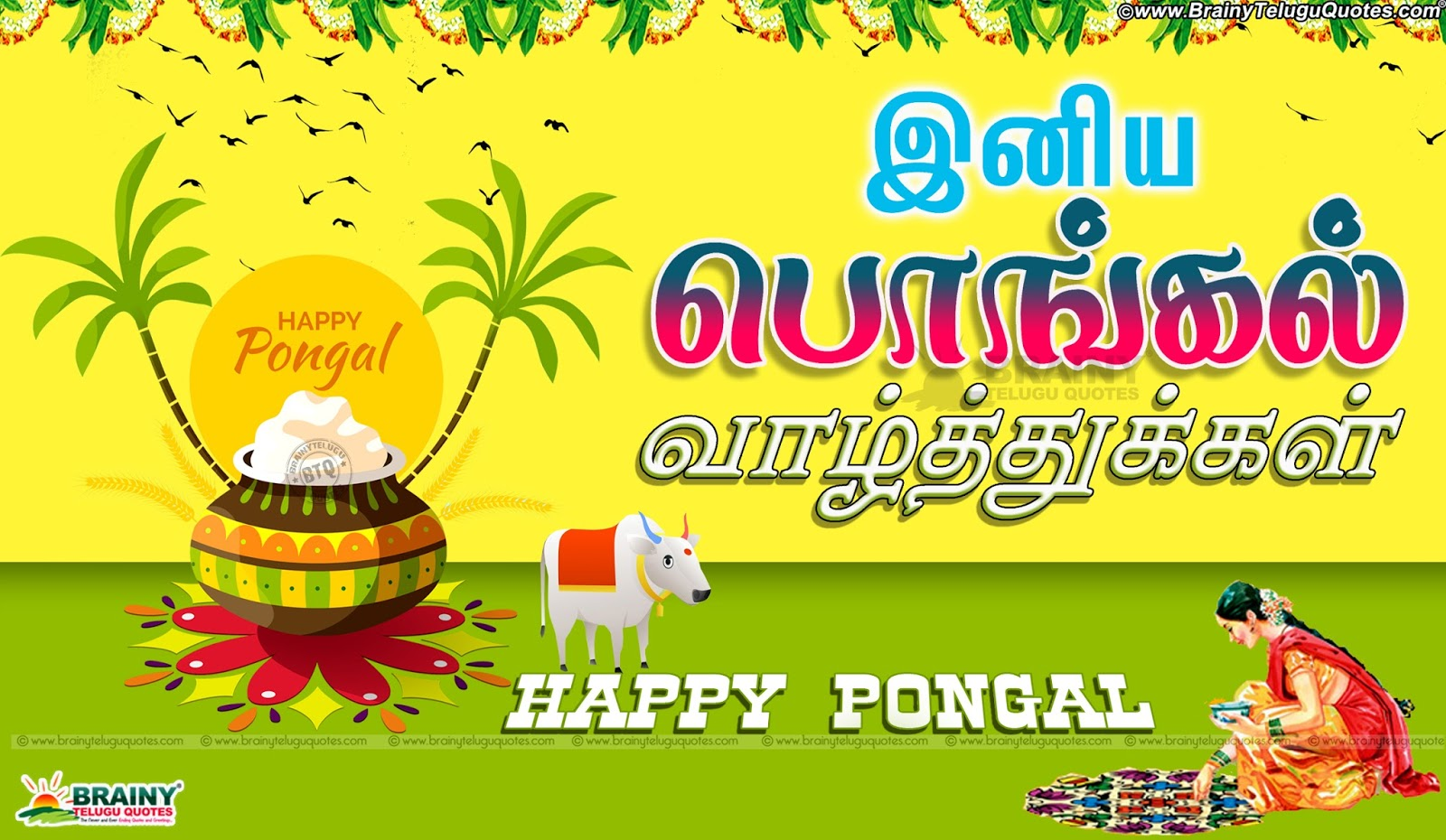 Ponkal valthukkal latest tamil pongal festival wishes quotes tamil pongal festival wishes quotes hd wallpapers pongal tamil greetings with hd wallpapers kristyandbryce Images