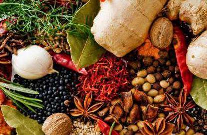 Zat Penyedap Dan Pemberi Aroma Pada Makanan Zat Penyedap Dan Pemberi Aroma Pada Makanan