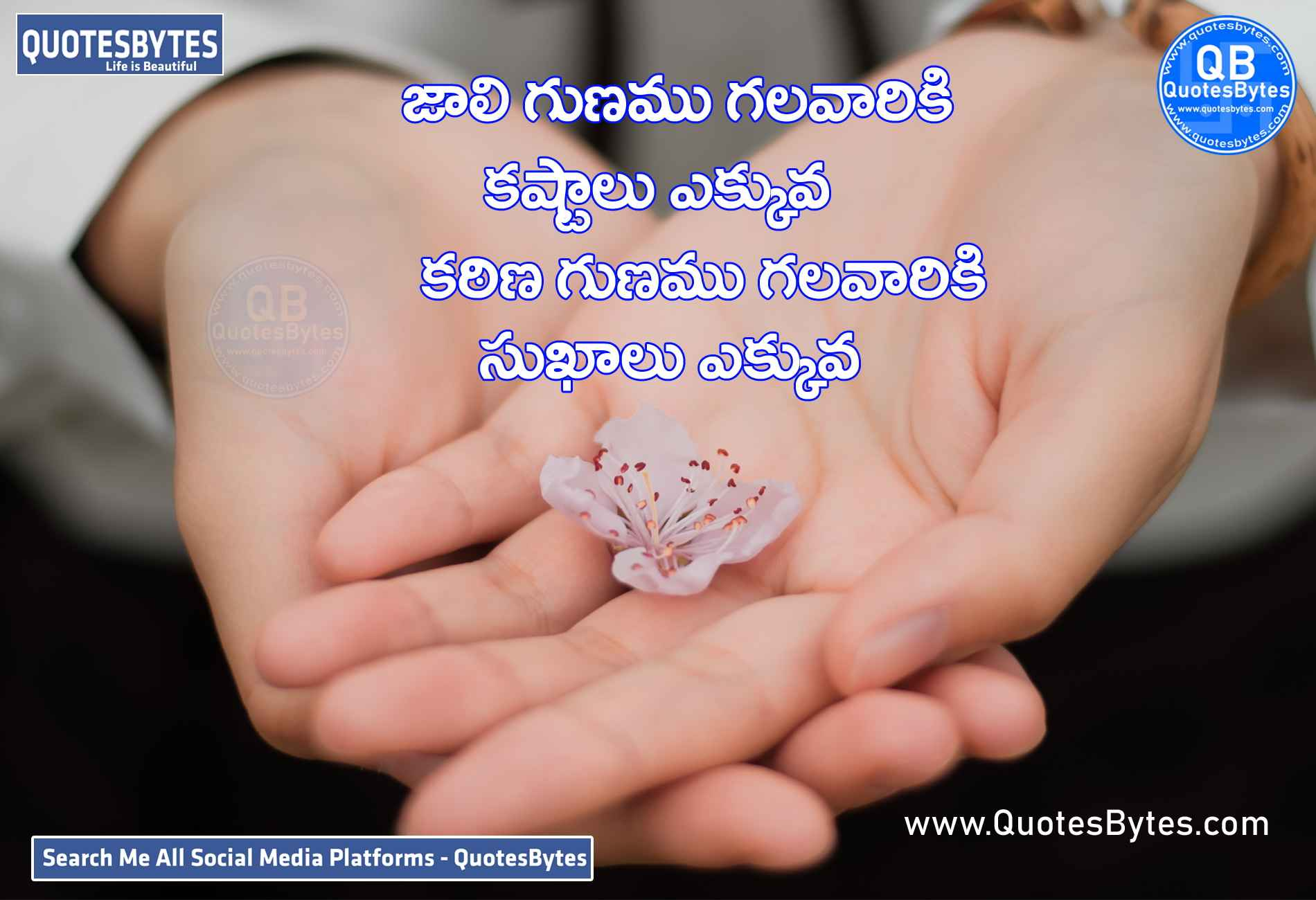 good morning images in telugu-Image of Good Morning Quotes Telugu for friends