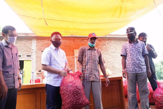 Bupati Ilham Azikin Serahkan Bantuan Benih Bawang Berkualitas di Ulu Ere