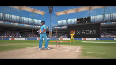 Features Of Cricket Lite 3D Game