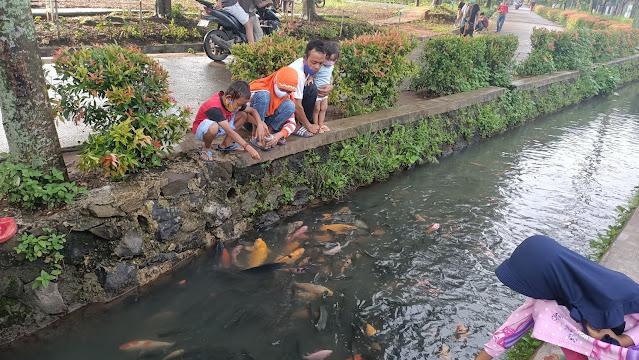 selokan ikan Puri Pamulang