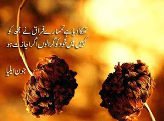 Urdu Shayari For Lover best dowload