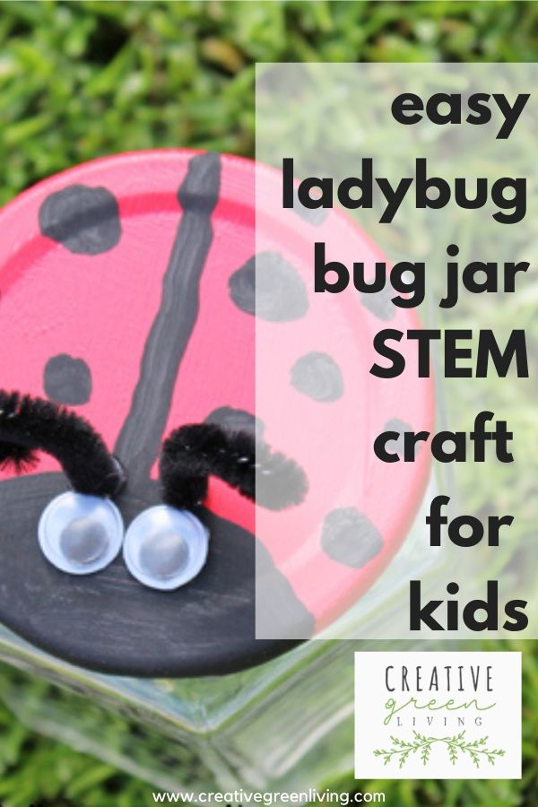 Easy ladybug craft idea with empty recycled jar: Turn it into a cute bug catcher. This is the perfect craft idea for kids in preschool or kindergarten and up. This creative DIY STEM project will get kids out in the garden looking for bugs to study insects. The painting is simple and uses waterproof nontoxic paint to make it easy to use outside. #STEM #STEMcraft #kindergartencrafts #preschoolcrafts #ladybugcrafts