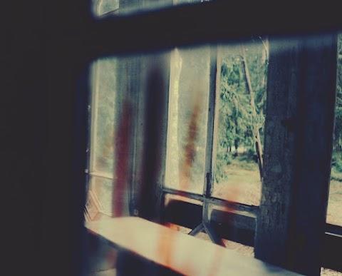 CUENTO Los chismes de la casa verde ** Las paredes aparecían resquebrajadas por todas partes, castigadas por la inclemencia de la intensa lluvia  | Lucía Oliván Santaliestra