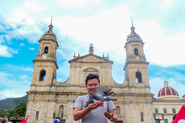 The Road to Latin America: Bogota, Colombia Itinerary + Expenses