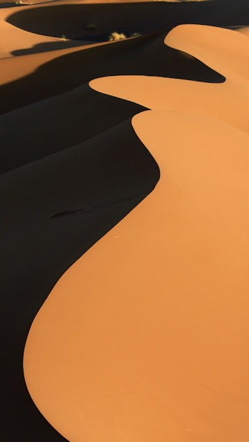 Desert wallpaper, dune, sand, nature