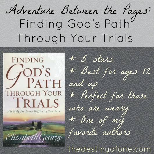 The Destiny of One: Adventure Between the Pages: Finding God's Path Through the Trials
