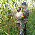 Babinsa Kodim Barabai Terjun Ke Wilayah Sukseskan Ketahanan Pangan