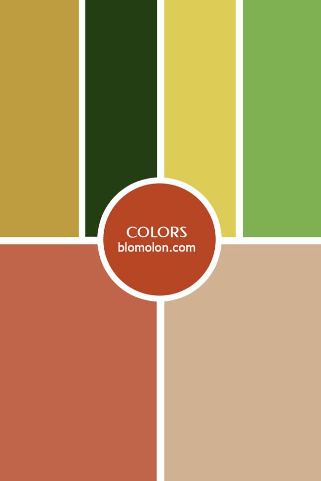 inspiracion_color_14