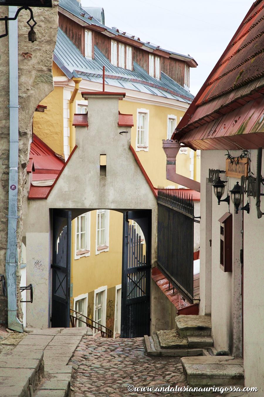 10 asiaa jot et tiennyt Eestista Virosta_Andalusian auringossa_matkablogi_18