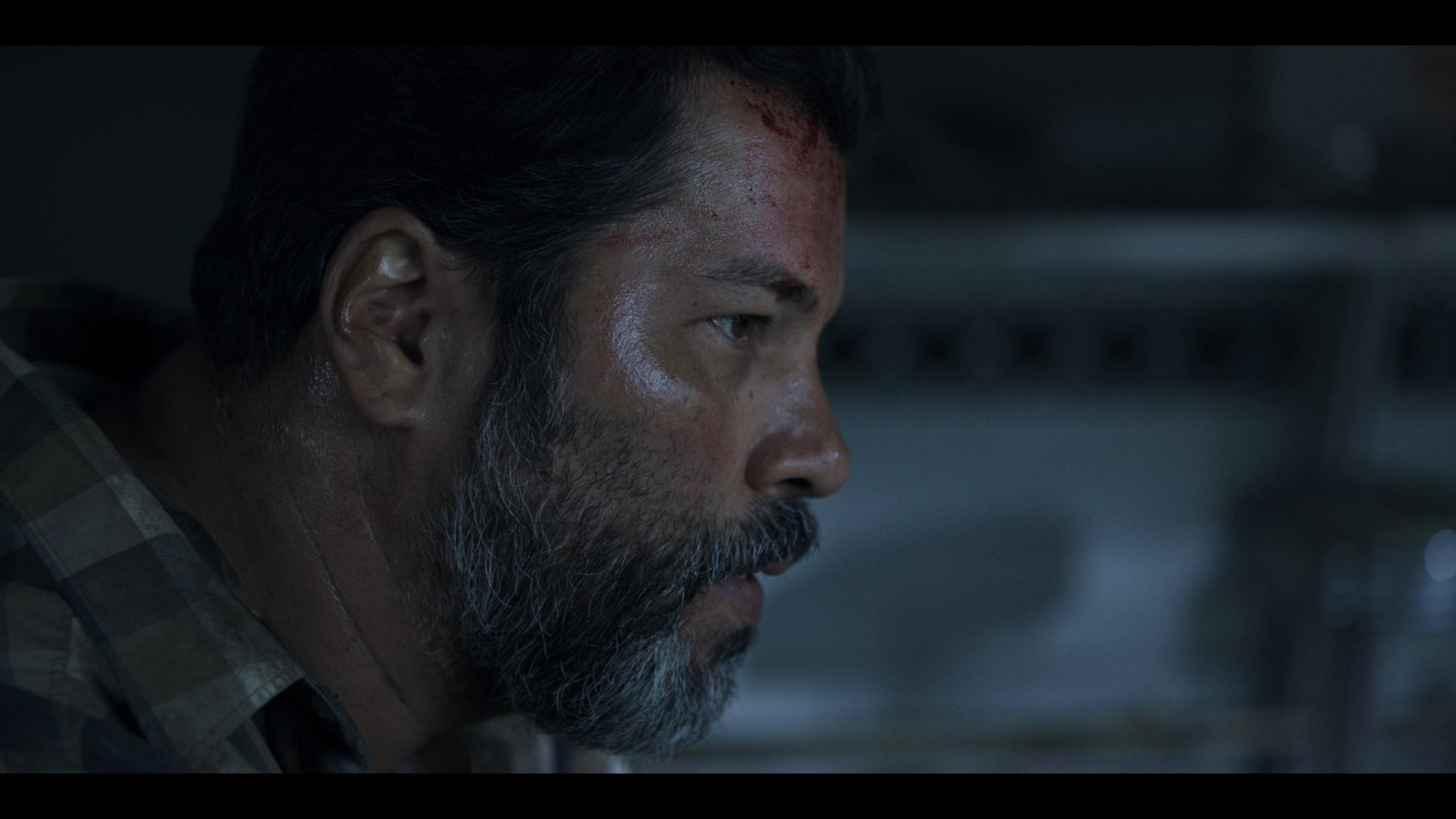 Black Summer (2019) Temporada 1 1080p WEB-DL Latino - Ingles