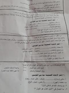 """تجميع امتحانات   للصف الرابع الإبتدائى """"الفعلى """" لغة عربية  إدارات ترم أول لتدريب عليها 81191098_2628752857356712_3444906887739342848_n"""