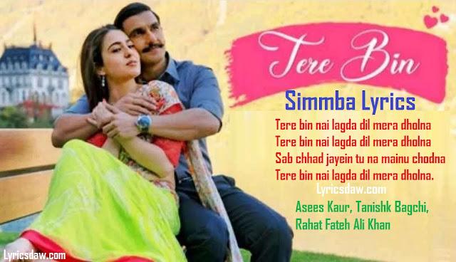 Tere Bin Simba Lyrics