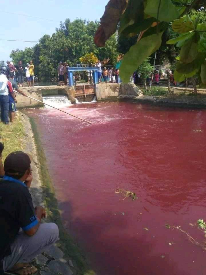 Air Sungai Warna Merah