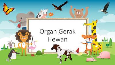 Materi Kelas 5 : Organ GerakHewan (download)