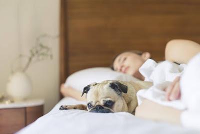فوائد النوم في انقاص الوزن