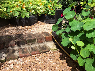 kitchen garden path