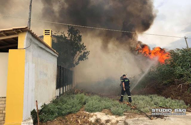 Αργολίδα: Πυρκαγιά στην περιοχή της Αγίας Άννας στο Τημένιο - Κινδύνεψαν σπίτια