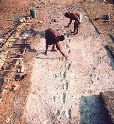 Impronte umane in Tanzania risalenti alla preistoria