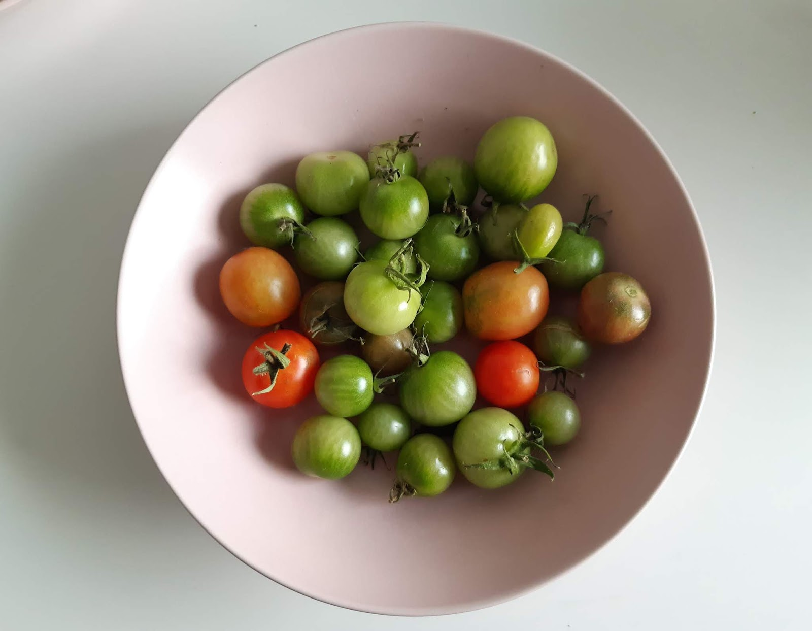 Tomatiini