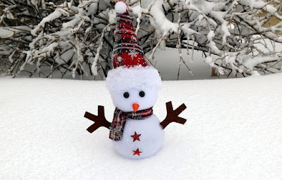 Daisy Girl Scout December Party Ideas-Make a Snowman
