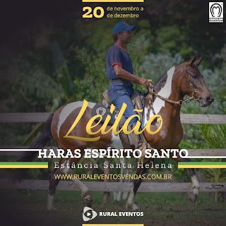 Leilão Haras Espírito Santo - Estância Santa Helena